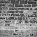 16765   Wall in black and white