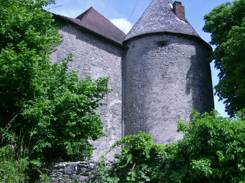<p>castle tower mansion</p>