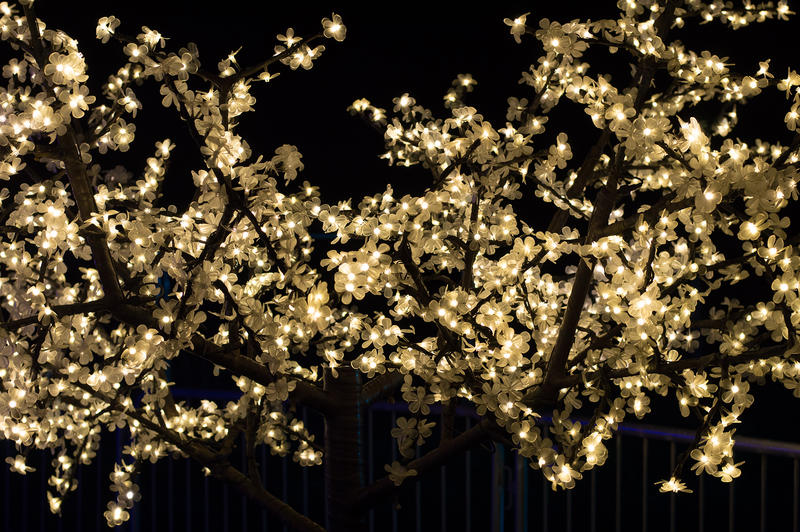 <p>Gold Christmas lights</p>