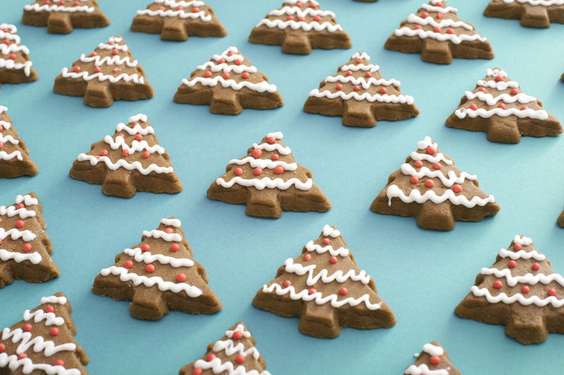 Iced gingerbread Christmas tree cookie background neatly laid out on a blue background in a high angle view