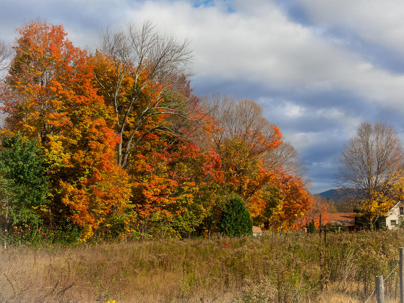 <p>Typical Autumn day in Vermont.</p>