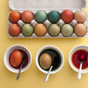13446   Preparing dyed colored Easter eggs