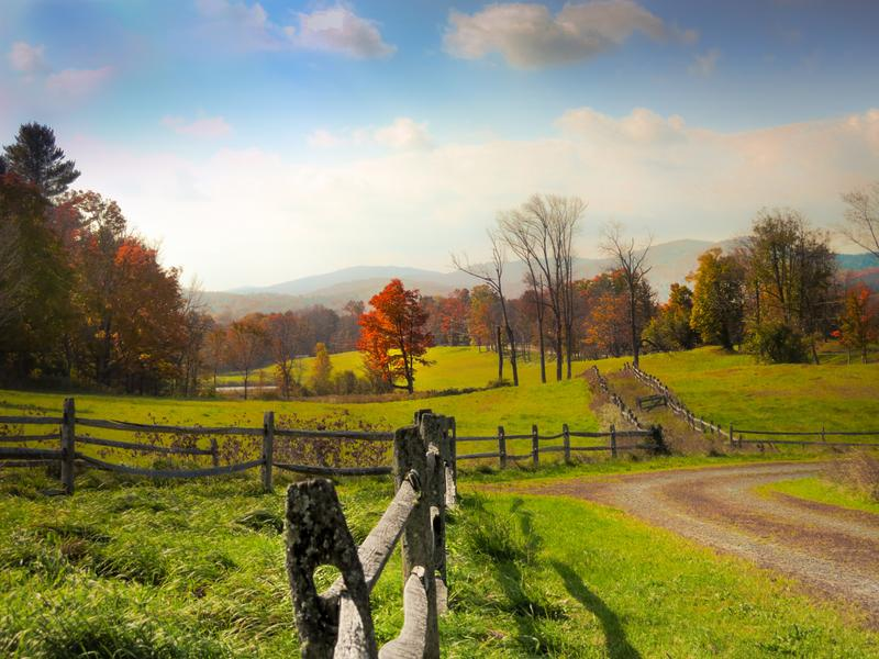<p>Post and rail fence on horse farm in rural Vermont on a hazy day in Autumn with orange Maple tree.</p>