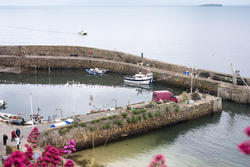 12805   Tranquil harbour, Crail, Fife Coast, Scotland