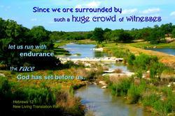11989   Crowd of Witnesses