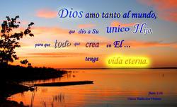 16864   Dios Amo Tanto