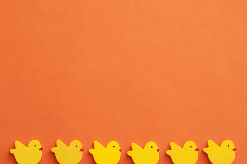 Orange Easter background concept with small figures of yellow chicks row and lots of orange paper copy space