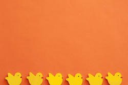 13473   Orange Easter background