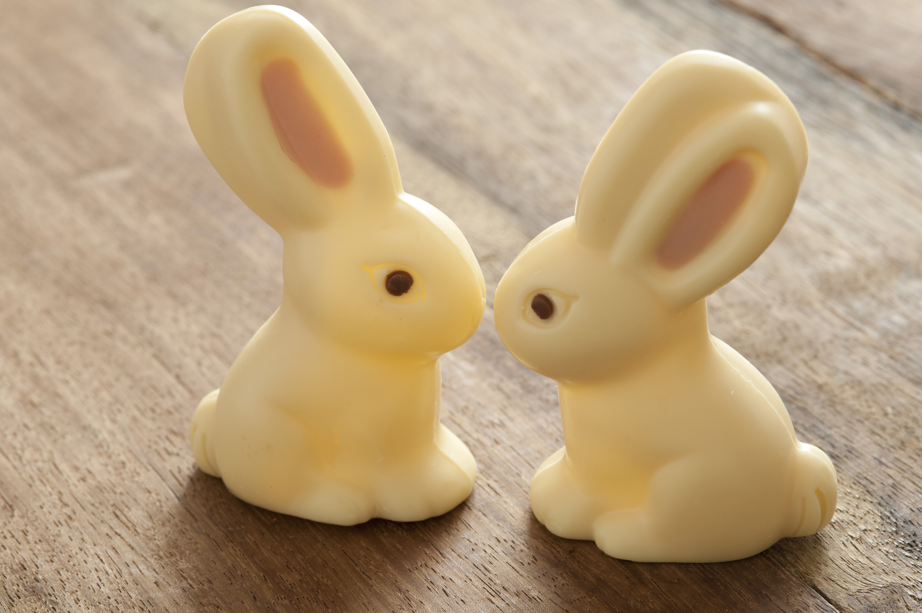 Two Easter Bunnys Kissing 5