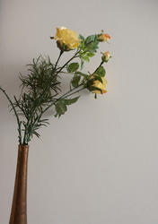 11892   Long stemmed yellow roses in a vase