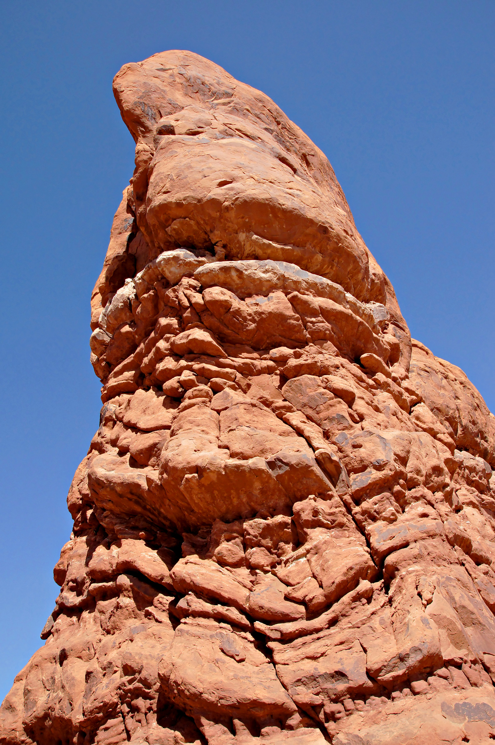 Free Stock Photo 12225 Garden Of Eden Rock Formation At Arches National Park Freeimageslive