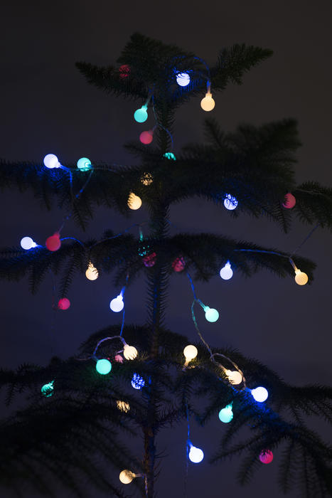 Colorful glowing lights on a natural pine or spruce Christmas tree in darkness for a festive holiday background