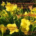 16925   God Cares