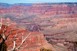 16100   Grand Canyon Gorges