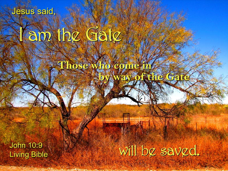<p>Jesus is the Gate</p>