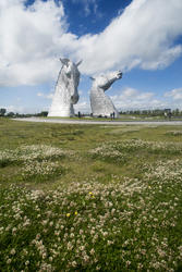 12854   Landscape view of the Kelpies, Falkirk, Scotland