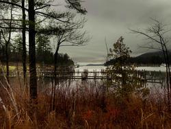 12023   lake rains