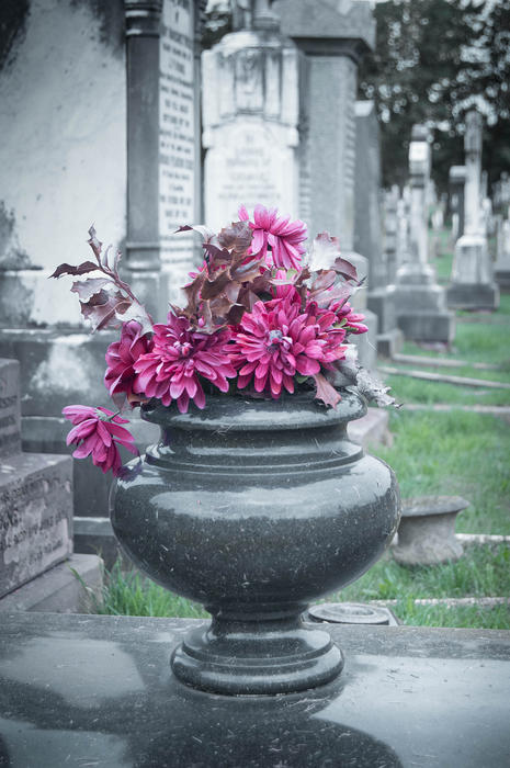 <p>Flowers on a gravestone</p>