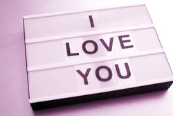 13502   Changeable I Love You sign