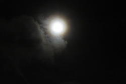 13061   moon coming out at night