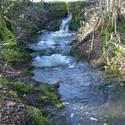 12103   mossy brook