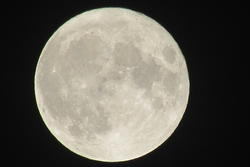 13063   pattened moon shot