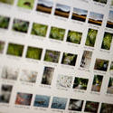 12185   Photographic image asset management closeup
