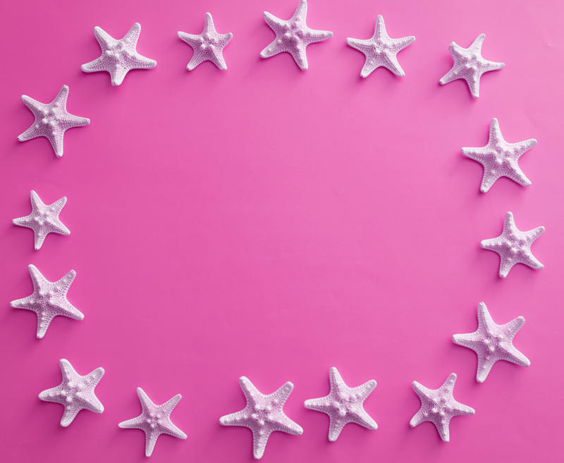 Oval white starfish frame on a colorful pink background with central copy space for marine and nautical themes