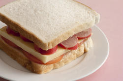 12765   sandwich using plain white bread with cheese