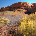12232   Red Rocks Park Afternoon