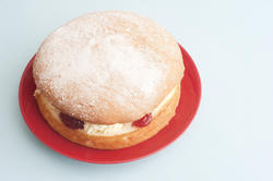 12344   Single sponge cake dessert with copy space