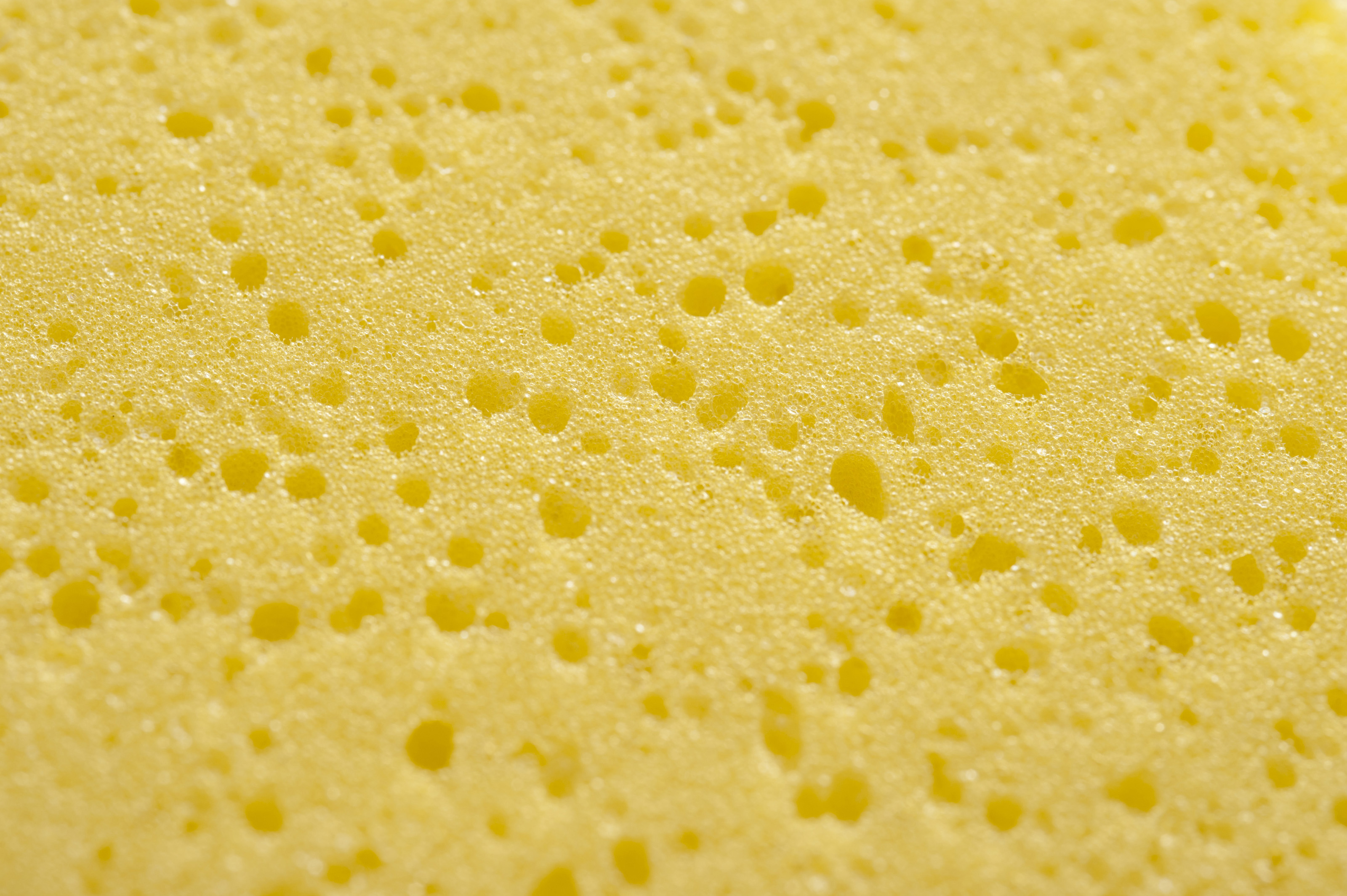 Free stock photo 12687 yellow sponge with pock marks for Sponge co uk