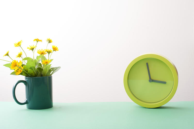 Springtime concept with a round minimalist modern green clock and colorful yellow spring flowers in a mug with central copy space