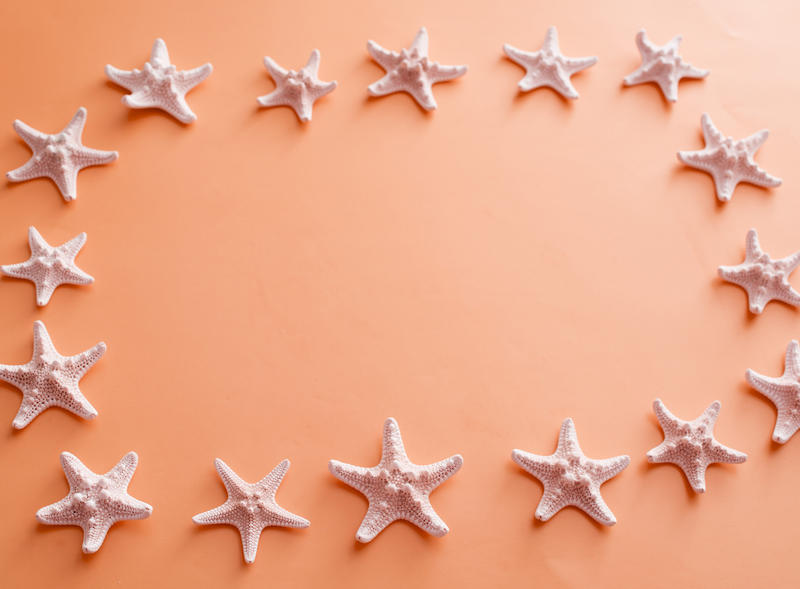 Starfish frame on an orange background with central copy space for your seaside vacation, marine or nautical concepts