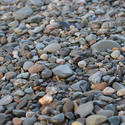 15637   Pebbles on a beach
