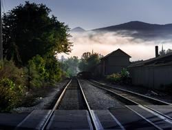 12019   the tracks