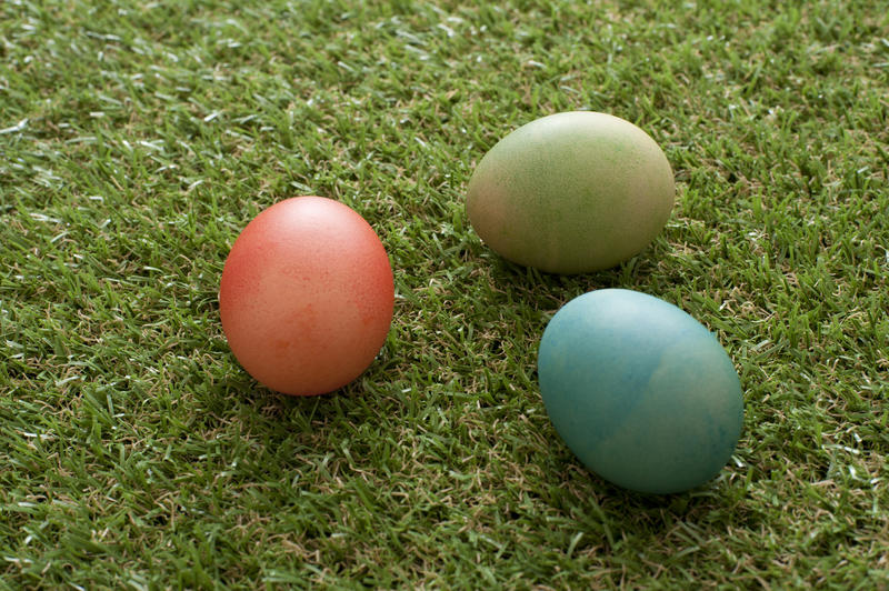 Three traditional homemade dyed Ester Eggs on green spring grass with copy space ready for the kids egg hunt