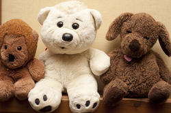 11977   Soft plush toy bears