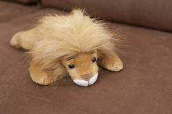 11980   Adorable stuffed toy lion on sofa