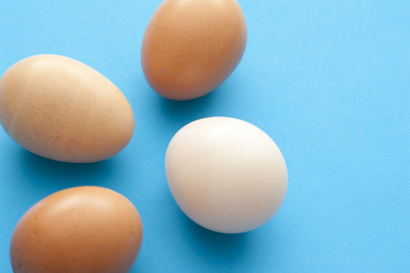 Four fresh raw hens eggs on a blue background with copy space, three brown and one white, ready to be used in cooking, baking or for breakfast
