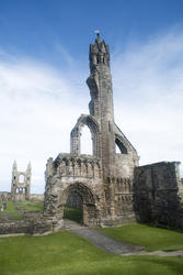 12798   Old historical remains of Saint Andrews Cathedral