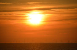 17037   A windfarm at sea with sunset