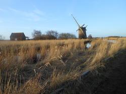 12584   windmill 2