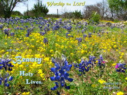 12248   Worship with Holy Lives