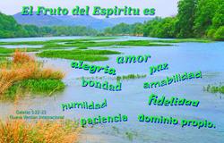 17553   El Fruto del Espiritu