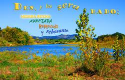 17535   Den y les Sera Dado