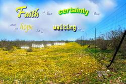 17454   Faith is the Certainty