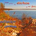 17545   Dichos Y Meditacion Aceptable