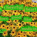 17571   Cheerful Heart Like Medicine