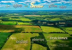 17484   El Senor Escucha a Nuestros Oraciones
